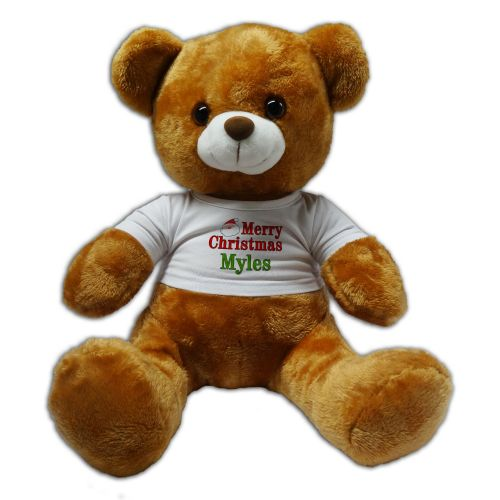 Personalised Any Name Merry Christmas 30cm Plush Soft Toy Bear